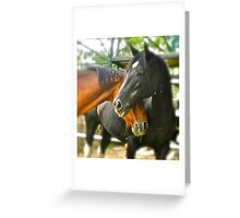 Two horses in love... Greeting Card