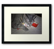Sassy With Her Toys Framed Print