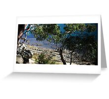 Gore Cove, Sydney Harbour Greeting Card