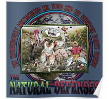 The Natural Defenses Poster