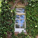 Window at the College by Lunaria