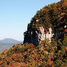 Pilot Mountain State Park by Sandy Woolard