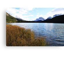 Waterfowl Lake Canvas Print