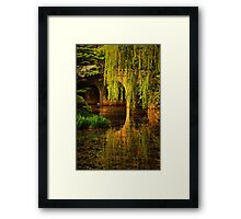 Reflections on Garden Pond Framed Print