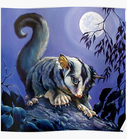 The Moonlighter; squirrel glider Poster