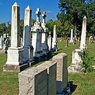 Chapel Point Gravestones by Tamara Valjean