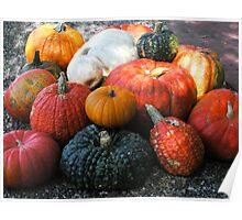 """""""Pebbled Pumpkins"""" Poster"""