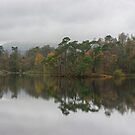 Tarn Hows in October by Jamie  Green