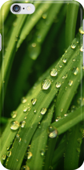 Green waterfall (iPhone case) by Lenka
