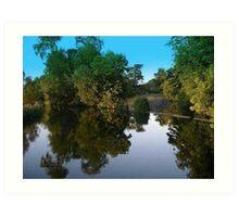 Riverside Reflections Art Print