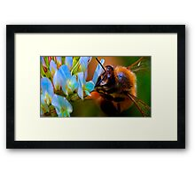 Some say life is nothing but toil Framed Print
