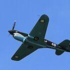 Curtiss P-40 Warhawk - Flying Tiger by SuddenJim