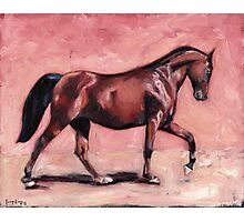 Walking with Purpose II ( horse portrait oil painting) Photographic Print