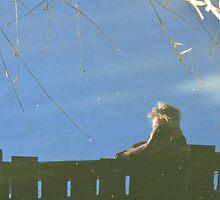 Reflection! by Jacqueline van Zetten