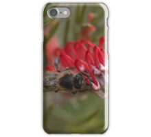 Resting on Red. iPhone Case/Skin