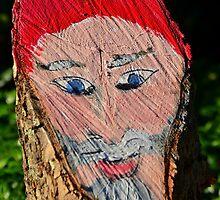 A Gnome! by Jacqueline van Zetten