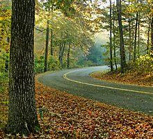 The Road by Carolyn  Fletcher