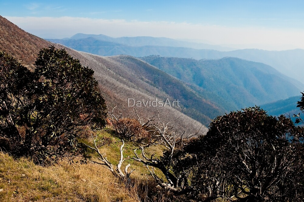 0060 Beautiful Hotham by DavidsArt
