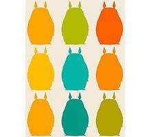 Totoro colors Photographic Print