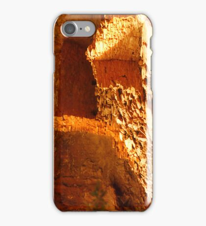Afternoon at the Ruins iPhone Case/Skin