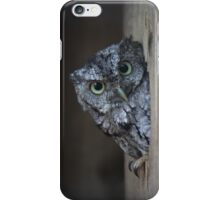 Eastern Screech Owl iPhone Case/Skin