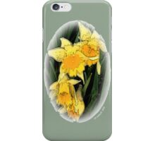 Fairyland iPhone Case/Skin