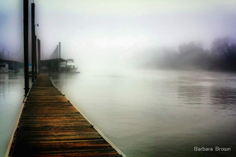 Foggy River by Barbara  Brown