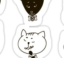 Set of cats heads.  Sticker
