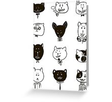 Set of cats heads.  Greeting Card