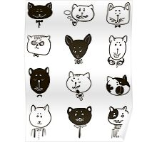 Set of cats heads.  Poster