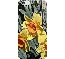 Impressions of Spring iPhone Case/Skin