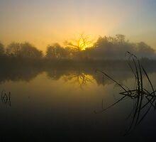 Misty Dawn 4.0 by Yhun Suarez
