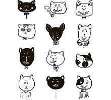 Set of cats heads Photographic Print