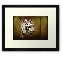 The visionary... she who knows Framed Print