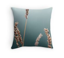 Uncomprehension II Throw Pillow