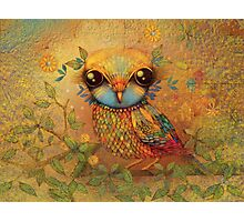 The Love Bird Photographic Print