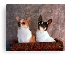 Stella and Eddie Canvas Print