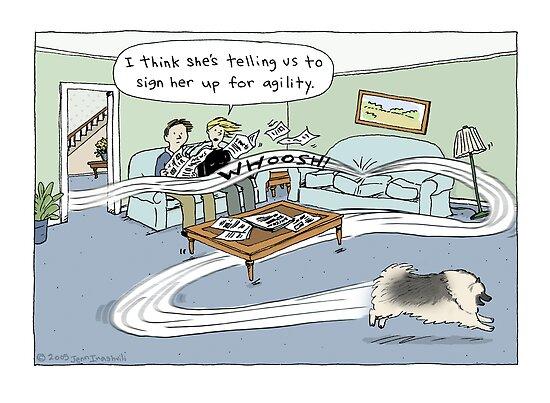 Keeshond Dog Cartoon by Jenn Inashvili
