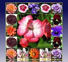 Sunshine and Showers Summer Flowers Collage by Kathryn Jones