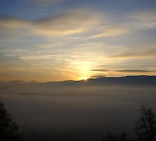 Foggy Sunrise by Annlynn Ward