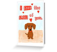Dachshund Valentine Greeting Card