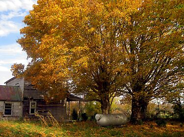 A Forsaken Farmhouse in Fall by Virginia Shutters