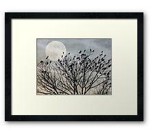 Traveler's Roost Framed Print