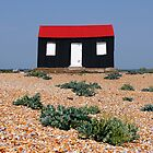 Beach Hut with a Red Roof by Andy Coleman