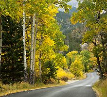 Fall River Road, Rocky Mountain National Park by Teresa Smith
