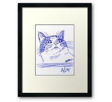 Chester the Cat Framed Print