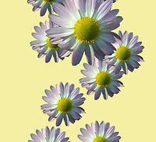 Daisy Pattern iPhone Case by Betty Mackey