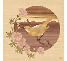 Bird and Bee - Wood Art Photographic Print