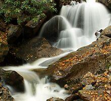 Glen Onoko Falls by Mark Van Scyoc
