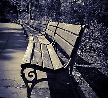wooden bench by Maria Heyens